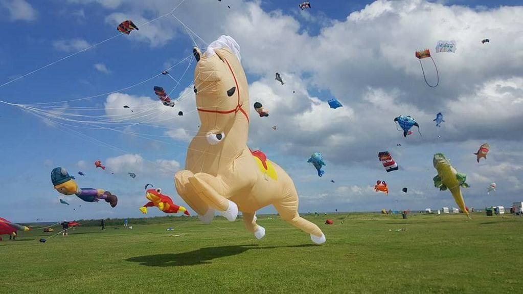 Peter Lynn Maxi Horse
